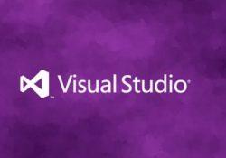 Visual Basic Forma Şifreli Giriş Yapma