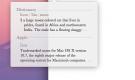 MAC Hızlı, Sözlük ve Eş Anlam Erişimi